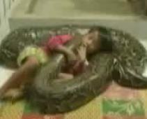 子供とニシキヘビ